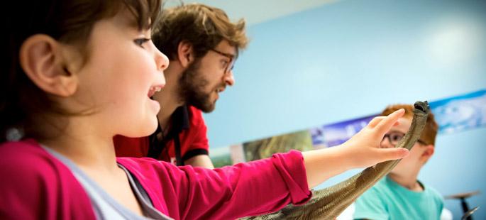 Sur les traces de dinosaures, activité pédagogique maternelle primaire