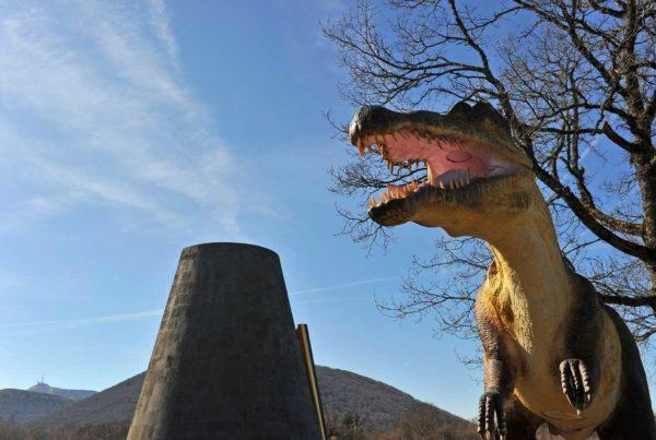 Animation Sur les traces des dinosaures