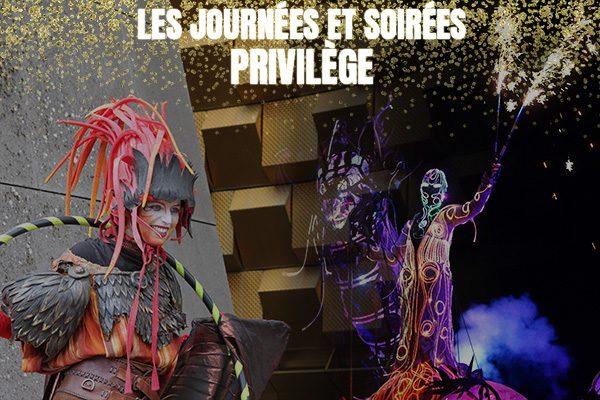 Les journées et soirées privilège à vulcania : animations spéciales + dîner exclusif + place VIP pour le spectacle pyrotechnique Dragon Time !